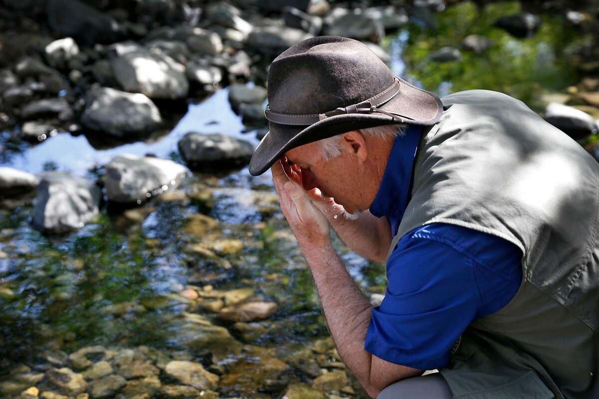 Forest Therapy Guide Amos Clifford spends some time at Crane Creek Regional Park in Santa Rosa as he explains