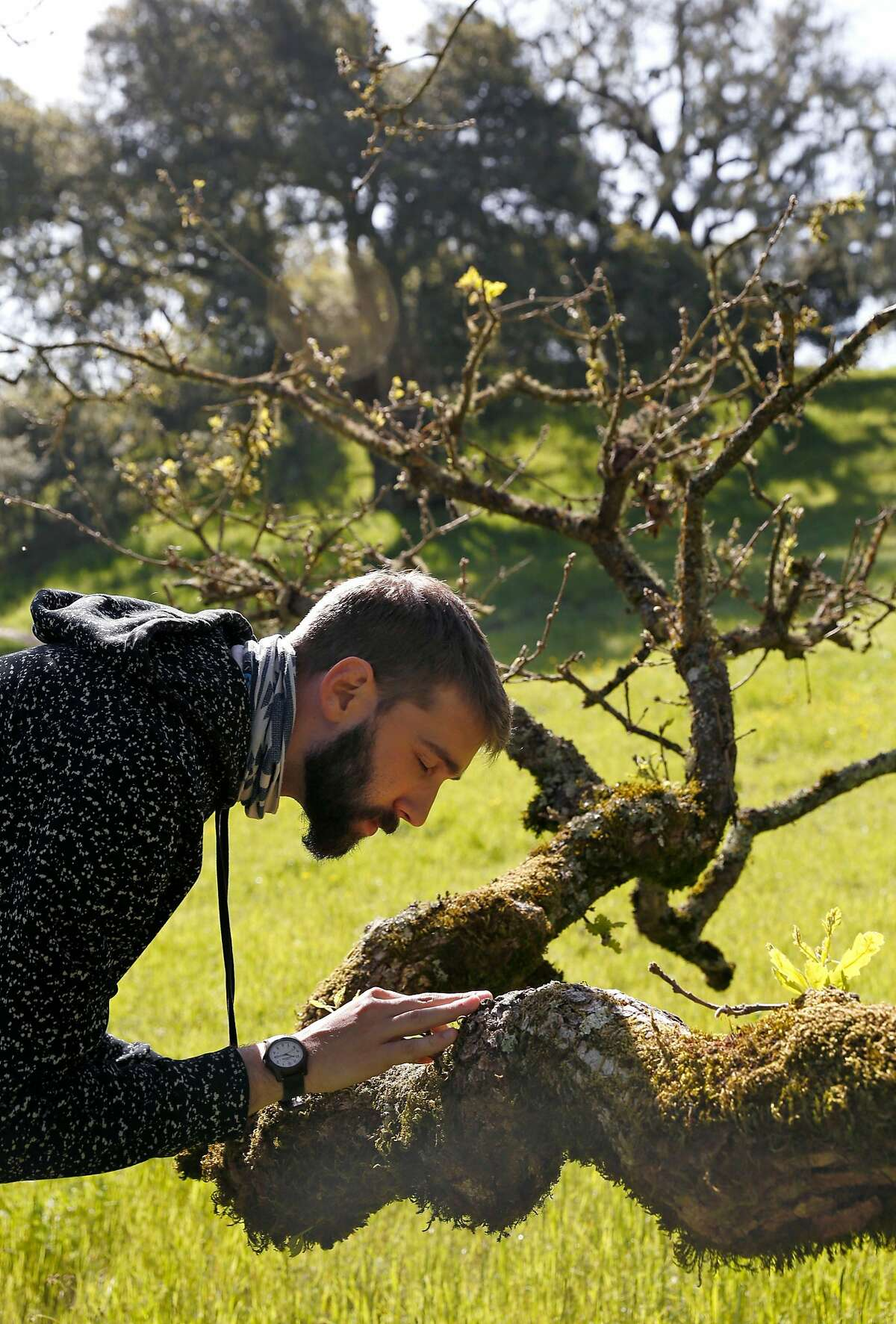 Forest Therapy Guide Ben Page spends some time at Crane Creek Regional Park in Santa Rosa.