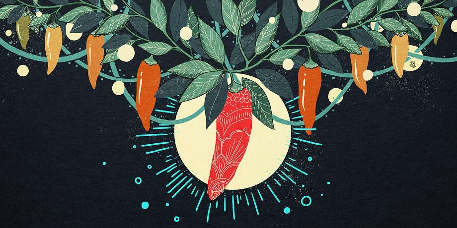Balla and Burns bred generations of peppers to create paprika that is loaded with fragrant oil. Photo: Housemade Illustrations By Christina Chung