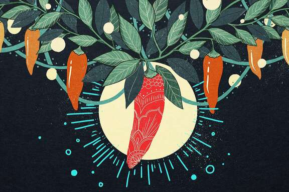 Illustrations for the Chronicle Food team's new HOUSEMADE column