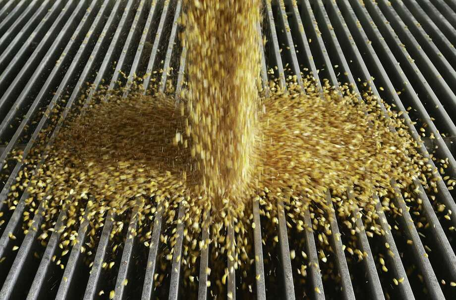 In this Jan. 6, 2015, file photo, corn is delivered to the Green Plains ethanol plant in Shenandoah, Iowa. After President Donald Trump announced plans to impose tariffs on products the Chinese government responded Friday, March 23, 2018, with a threat to add an equal 25 percent charge on U.S. products including pork. A 15 percent tariff also would be imposed on wine, apples, ethanol and stainless steel pipe as part of a $3 billion list of U.S. goods for possible retaliation. Photo: Nati Harnik /Associated Press / Copyright 2018 The Associated Press. All rights reserved.