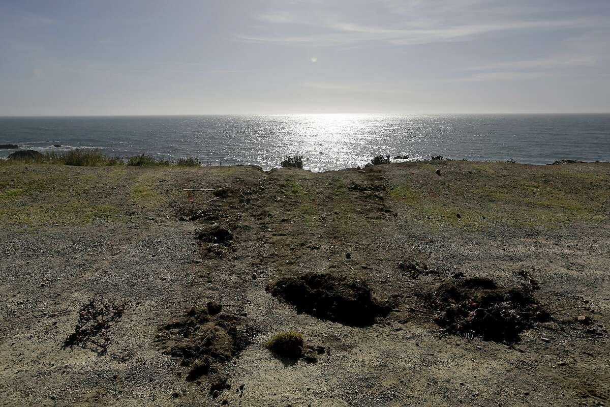 Tracks lead away from the edge of the cliff Wednesday, March 28, 2018, where the SUV of Jennifer and Sarah Hart went off the Pacific Coast Highway near Westport, Calif., on Monday.