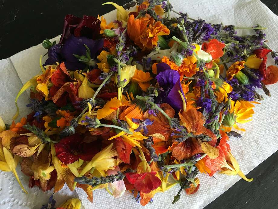 Assorted edible flowers Photo: Sarah Fritsche / The Chronicle