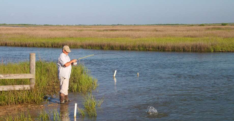 Predator fish such as the redfish angler Todd Steele battles gravitate to the bayous and other waterways veining forage-rich coastal estuaries to take advantage of shrimp and small finfish carried and concentrated by tidal movement. Photo: Shannon Tompkins/Houston Chronicle