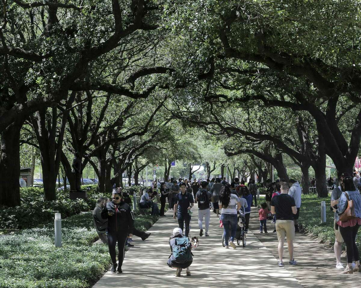 People walk through the line of oak trees during Discovery Green's 10th year celebration on Sunday, April 15, 2018, in Houston. ( Elizabeth Conley / Houston Chronicle )