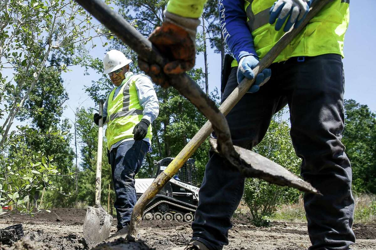 """Landscape Art Inc. tech hand Marco Atrisco, left, an H-2B visa recipient from Mexico, plants trees in the eastern glades of Memorial Park Wednesday, April 11, 2018 in Houston. Landscape Art, which uses about 40 H-2B visas to fill positions almost had their workforce cut in in half when they didn't get visas the first time they applied for them this year. """"If we didn't get the H-2B visits, it means we would have to lay off American workers,"""" Landscape Art Inc. vice president Jay Williams said. """"If my workforce has gone from 80 to 40 it means I have to cut back on managers for that workforce."""" (Michael Ciaglo / Houston Chronicle)"""