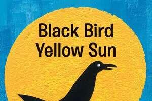 """Black Bird Yellow Sun"" By Steve Light $7.99 Candlewick Press"