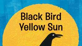 """Black Bird Yellow Sun"" By Steve Light $7.99 Candlewick Press"