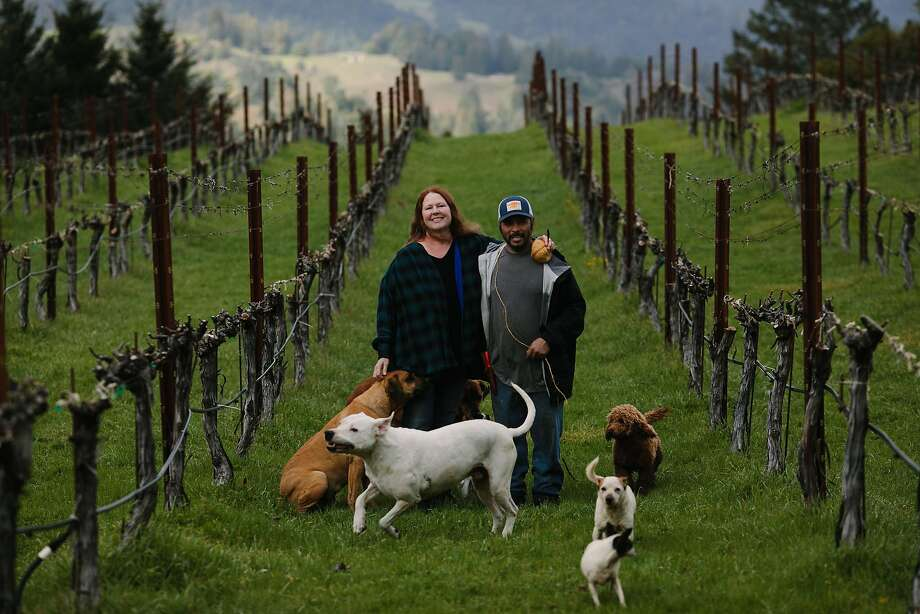 Jesus Velasquez and Patricia Greer in their Waterhorse Ridge Vineyard in Cazadero. Photo: Mason Trinca / Special To The Chronicle
