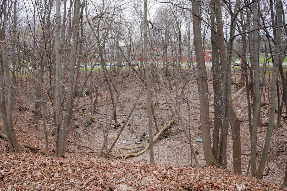 A view of a wooded area off of Park Ave. on Tuesday, April 17, 2018, in Albany, N.Y. This would be the site of a proposed sewer plant. (Paul Buckowski/Times Union)
