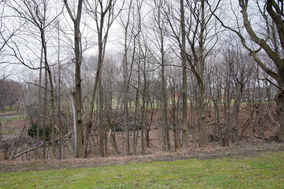 A view of a wooded area off of Park Ave. on Tuesday, April 17, 2018, in Albany, N.Y. This would be the site of a proposed sewer plant.   (Paul Buckowski/Times Union) Photo: PAUL BUCKOWSKI, Albany Times Union / (Paul Buckowski/Times Union)