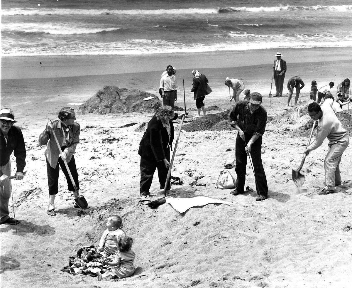 Emperor Norton Treasure Hunt 1957. hunters dig, and babies watch, as the treasure is pursued at Stinson Beach, June 4, 1957 Photo ran 06/5/1957, p. 4