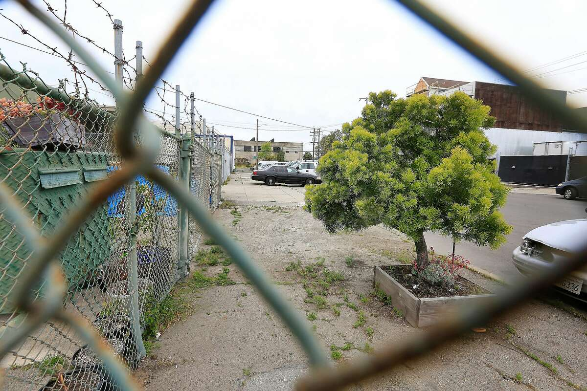 A lone tree is seen on the 1600 block of Hudson Avenue on Wednesday, April 18, 2018, in San Francisco, Calif. The 1600 block of Hudson is one place the city is looking to plant trees in the near future.