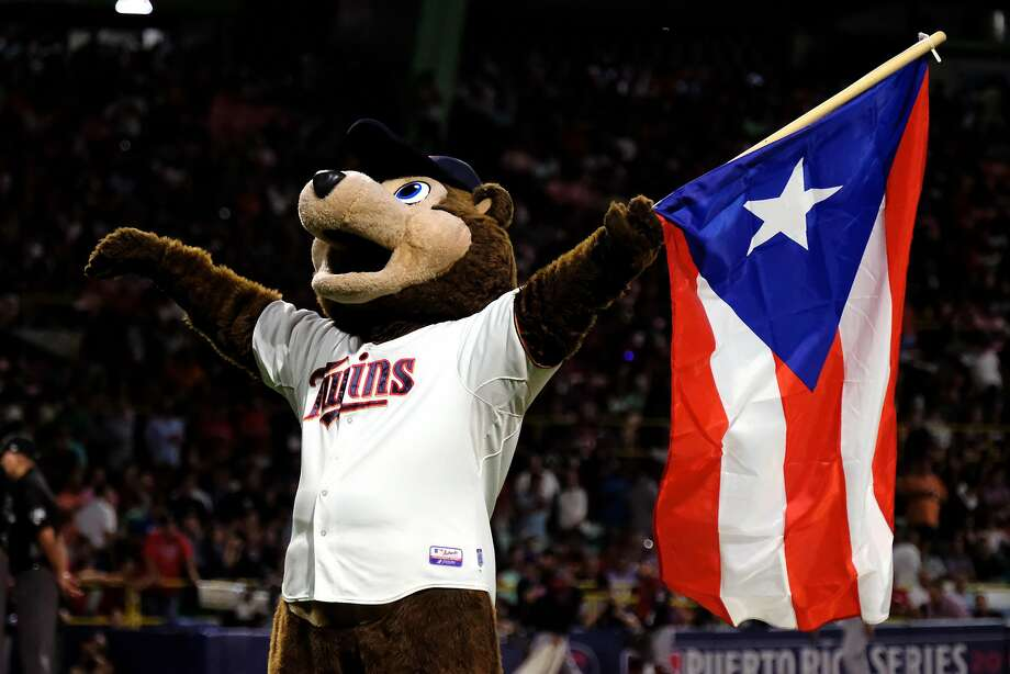 The Minnesota Twins' mascot TC Bear carries the Puerto Rican flag before the start of a game against the Cleveland Indians at Hiram Bithorn Stadium on April 18,  in San Juan, Puerto Rico.  Photo: Ricardo Arduengo / Getty Images