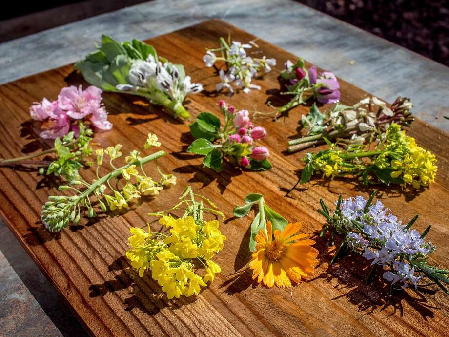 Edible Flowers in Peter Jacobsen's garden in Yountville, Calif. are seen on March 17th, 2018. Bottom right; Clockwise,; Rosemary, Calendula, Mustard, Brassica, Chick Weed, Peach Blossom, Fava Bean, Radish, Pea Blossom, White Arugula, Yellow Arugula, center Transcendent Crab Apple. Photo: John Storey, Special To The Chronicle