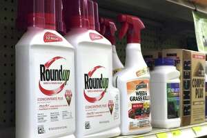An appeals court ruling said California can list glyphosate, an ingredient in the herbicide Roundup, as a chemical that could cause cancer based on findings by the International Agency for Research on Cancer.