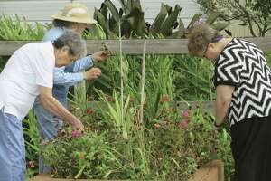 Gardening is a popular activity at Country Village assisted living community in Angleton.