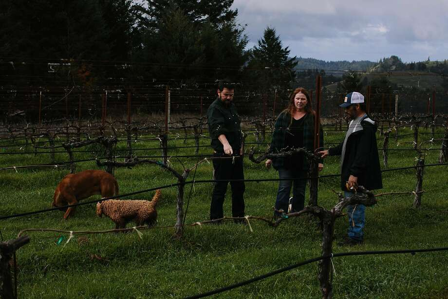 John Lockwood, winemaker, talks to Jesus Velasquez and Patricia Greer about the vines at Waterhorse Ridge Vineyard in Cazadero. Photo: Mason Trinca / Special To The Chronicle