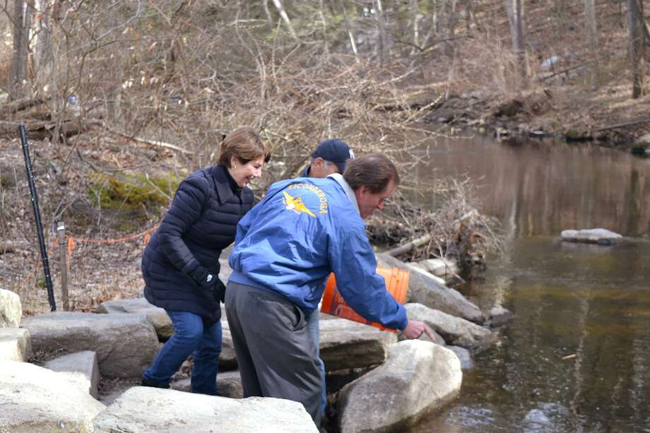 State Reps. Livvy Floren, R-149, left, and Fred Camillo, R-151, in Yankees cap, join state Sen. L. Scott Frantz, R-36, to help restock the Mianus River with trout and brook in anticipation of the start of fishing season in the state. Photo: Contributed /