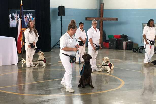 The Patriot Paws program at Crain Unit in Gatesville held a graduation Friday for eight pups ready to help veterans.
