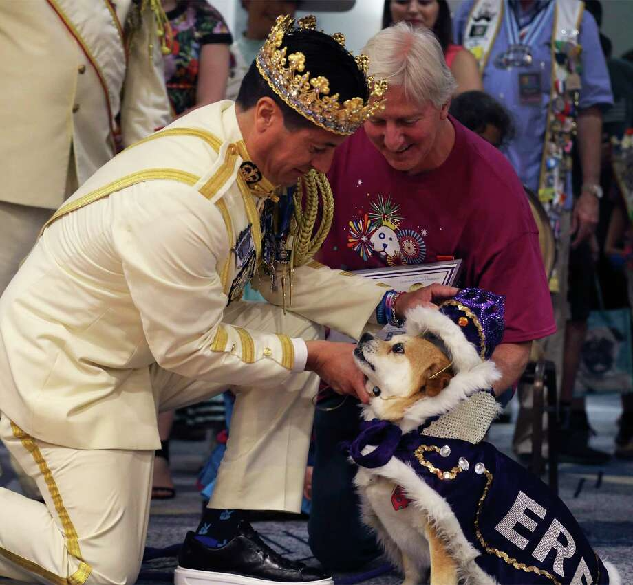 "Rey Feo LXX Kenneth Flores (left) places the crown on El Rey Fido XVI, Jerry, with owner Robert Rosenthal (right) during San Antonio Humane Society's 2018 El Rey Fido Coronation on Saturday, Apr. 21, 2018. Jerry, a mixed breed, was rescued by Robert and Jill Rosenthal of Alamo Heights. This year's court featured five pooches, including Squish, the brindle rescue dog with the ""semicolon face."" More than $50,000 was raised for the rescue organization. Photo: Kin Man Hui, San Antonio Express-News / ©2018 San Antonio Express-News"