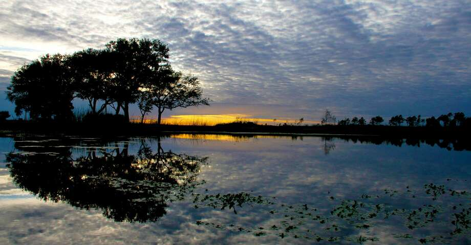 An 8,200-acre tract of the Sabine Ranch transferred this month to McFaddin National Wildlife Refuge by The Conservation Fund includes some of the most extensive, rare and environmentally crucial freshwater wetlands remaining in the state. Photo: Shannon Tompkins/Houston Chronicle