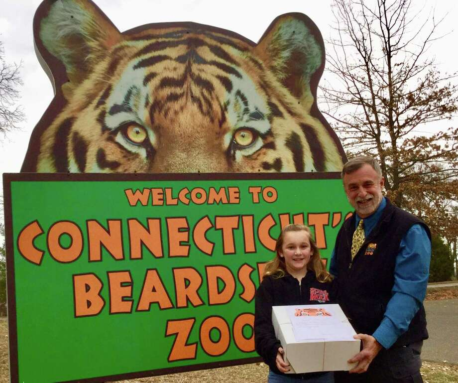 zoo names trumbull girl as trot chair connecticut post