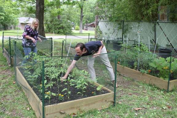 Ladd Hight and Janet Hopkins check the progress of plants in the Cleveland community garden on S. Fenner St.