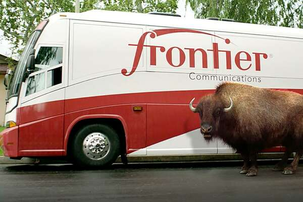 A promotional photo of Frontier Communications' buffalo mascot, as created by Catapult Integrated Services of Wilton, Conn. On April 23, 2018, Adweek reported Hill Holliday having taken over Frontier ad duties from Catapult, which had been on the account since 2012 and which created the buffalo campaign.