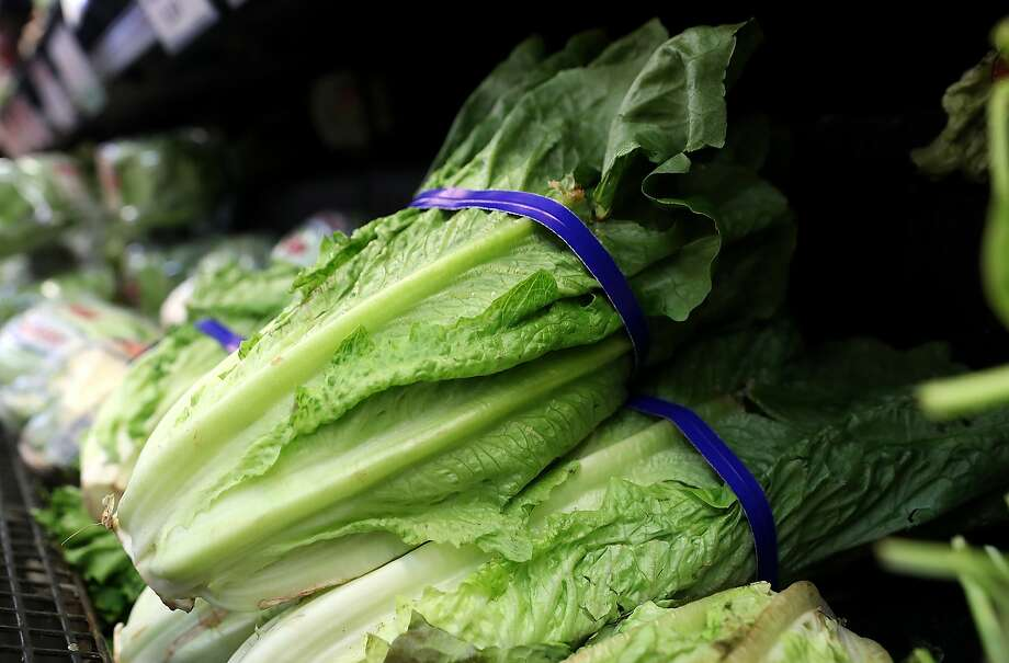Romaine lettuce is displayed on a shelf at a supermarket on April 23, 2018 in San Rafael, California.  The Food and Drug Administration and the Centers for Disease Control and Prevention is advising American consumers to throw away and avoid eating Romaine lettuce, especially if its origin is from Yuma, Arizona. Photo: Justin Sullivan, Getty Images