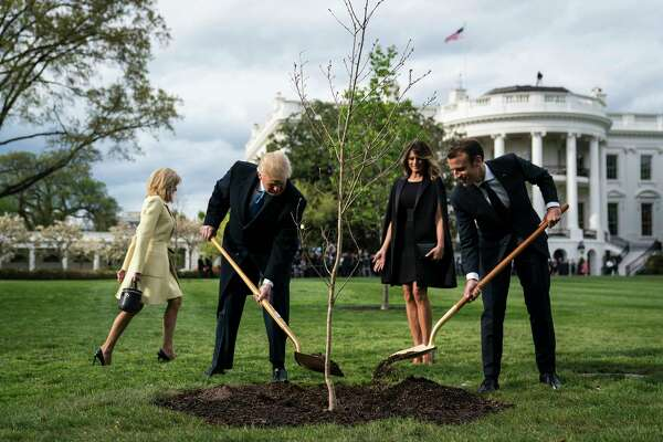 President Trump and French President Emmanuel Macron plant a tree as first lady Melania Trump and Macron's wife, Brigitte Macron, watch on the South Lawn at the White House on Monday.