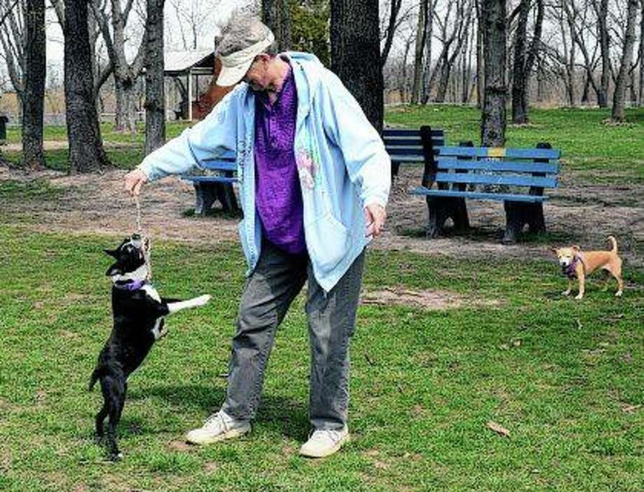 Linda Schwartz of Jacksonville plays Wednesday with her dog, Daisy, at Jacksonville Bark Park. Photo:       Audrey Clayton | Journal-Courier
