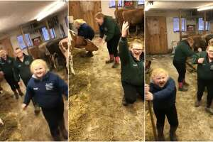 """Three sisters in Northern New York have gone viral after their mom took video of them singing and dancing to Journey's """"Don't Stop Believin'"""" while tending to their farm."""