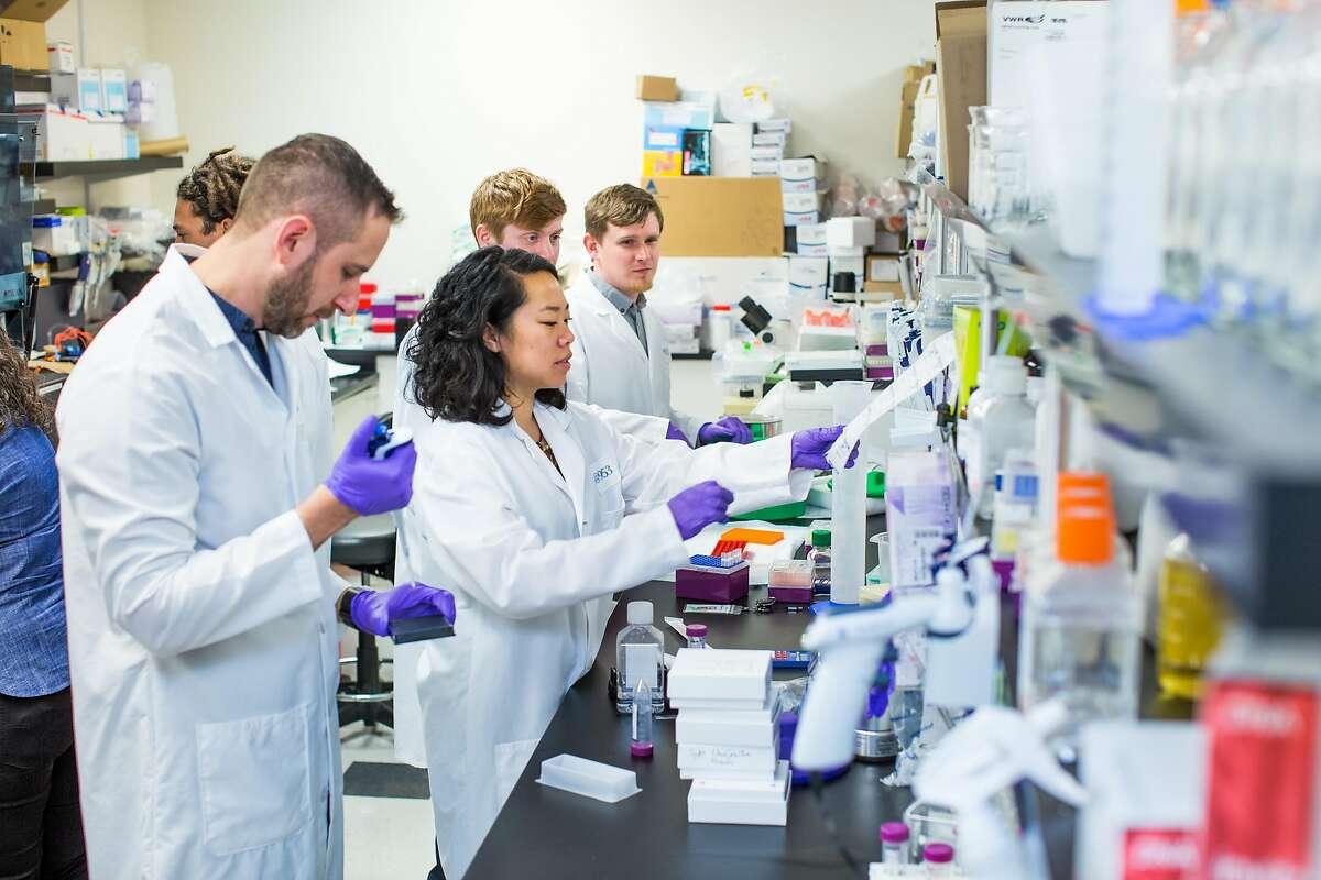 Employees of Mammoth Biosciences, a new startup co-founded by CRISPR pioneer Jennifer Doudna, in the company's lab.