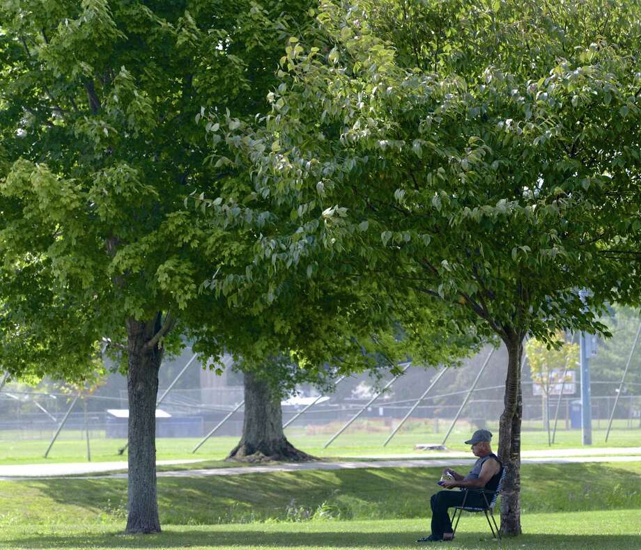 File photo of a Danbury man sitting in the shade of a tree in Rogers Park enjoying a snack. Photo: H John Voorhees III / Hearst Connecticut Media / The News-Times