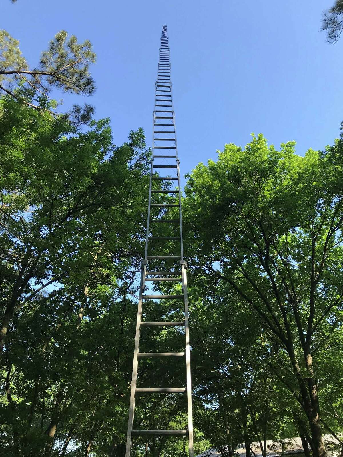 """Sculptor Paul Kittelson's 50-foot tall """"Existential Ladder"""" is hard to ignore in an open spot of the back yard in the Itchy Acres home and studio compound he shares with his long-time partner, Carter Ernst."""