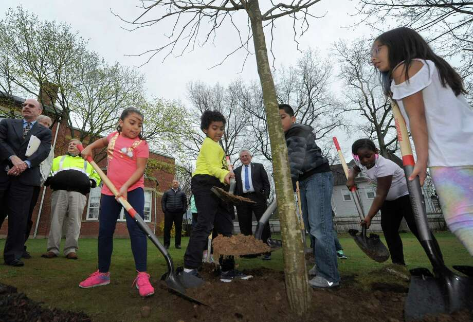 Second grader Samantha Bautista and First Grader Joel Williiams join the other Arbor Day Poster Winners as they help plant a Plane Tree as Tracey Elementary School hosts the Norwalk Arbor Day Celebration Friday, April 27, 2018, in Norwalk, Conn. Photo: Erik Trautmann / Hearst Connecticut Media / Norwalk Hour