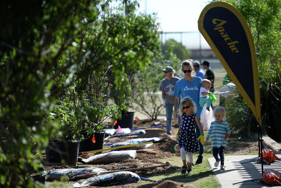 Volunteers plant trees April 28, 2018, in Windlands Park. The trees were donated by Apache Corporation to honor children born or adopted into regional Apache employee families in 2017. James Durbin/Reporter-Telegram Photo: James Durbin