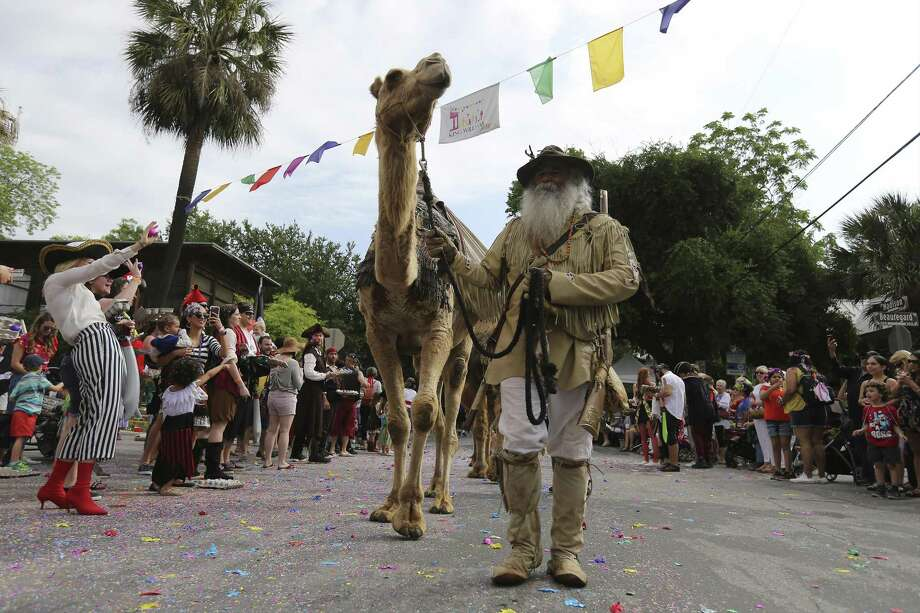 Gil Hernandez of the Texas Camel Corps walks with a camel as the King William Fair kicks off with its ever-quirky parade with thousands lining the streets of the historic neighborhood on Saturday, Apr. 28, 2018. This year in conjunction with San Antonio's Tricentennial celebration, the parade was filled with historic themes of the city's humble beginnings. Sprinkled in the history lessons were the usual colorful and often off-beat particpants taking part in the parade. (Kin Man Hui/San Antonio Express-News) Photo: Kin Man Hui, Staff / San Antonio Express-News / ©2018 San Antonio Express-News