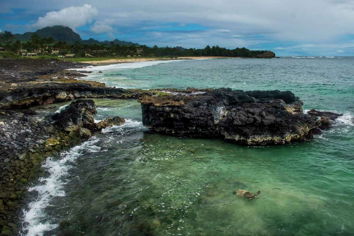 Top: A swimmer stands on a rock ledge behind the 300-foot Hanakapi'ai Falls, a 4-mile hike along the Kalalau Trail. Above: A sea turtle swims off the Maha'ulepu Heritage Trail. Left: A surfer wades into the water at Hanalei Beach Park.
