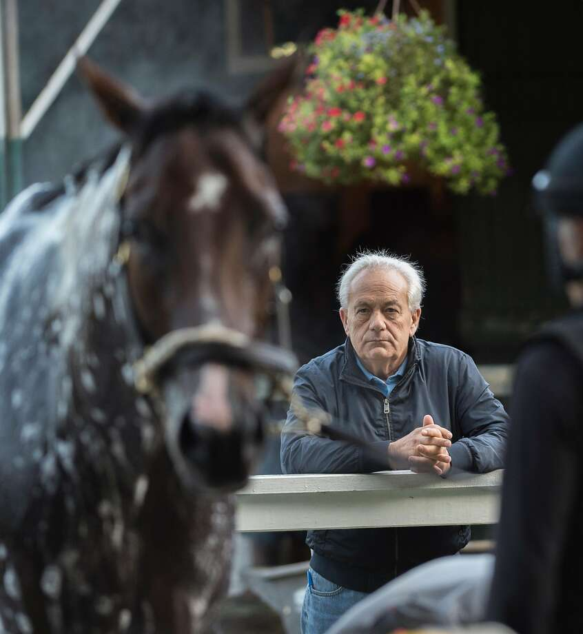 Trainer Jerry Hollendorfer watches his charge Personal Ensign entrant Songbird in the barn area of the Saratoga Race Course Thursday Aug. 24, 2017 in Rexford, N.Y.  (Skip Dickstein/Times Union) Photo: Skip Dickstein / Albany Times Union