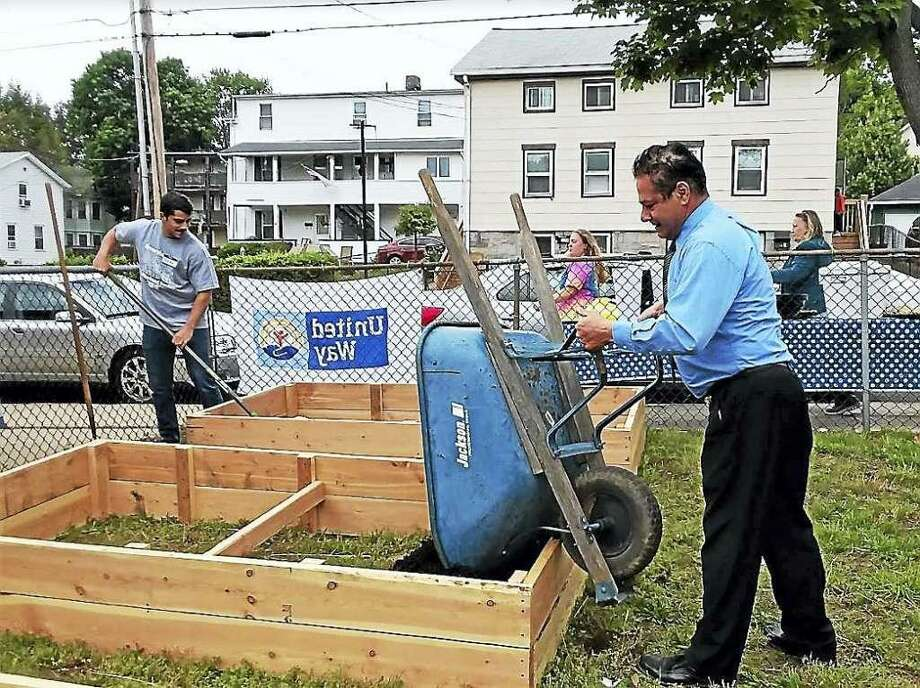 Scenes from work last year at Grow Your Own gardens in Ansonia. Photo: Contributed Photo / Greg Martin - Ansonia City Hall