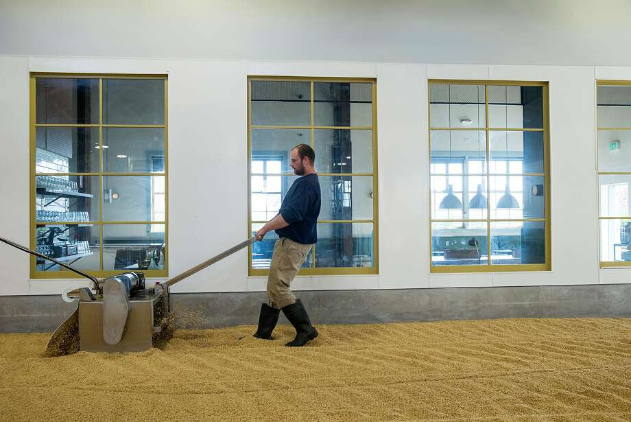Maltster Zack Reinstein turns barley on the malting floor while working at Admiral Maltings in Alameda, Calif., on Friday, April 27, 2018. Admiral Maltings practices the traditional art of floor malting and they turn their malt on the germination floor by hand. Their pub, The Rake, overlooks the malting floor. Photo: Laura Morton / Special To The Chronicle