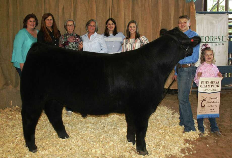 Cleveland youth livestock auction nets 500k houston chronicle chase andersons grand champion market steer sold for 12500 to encino landscapes tom johnson and thecheapjerseys Choice Image
