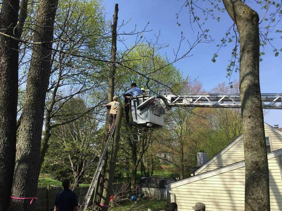 Bethel firefighters use Tower 1 to rescue a man injured while cutting down a tree on Paul Street Thursday. Photo: / Dirk Perrefort