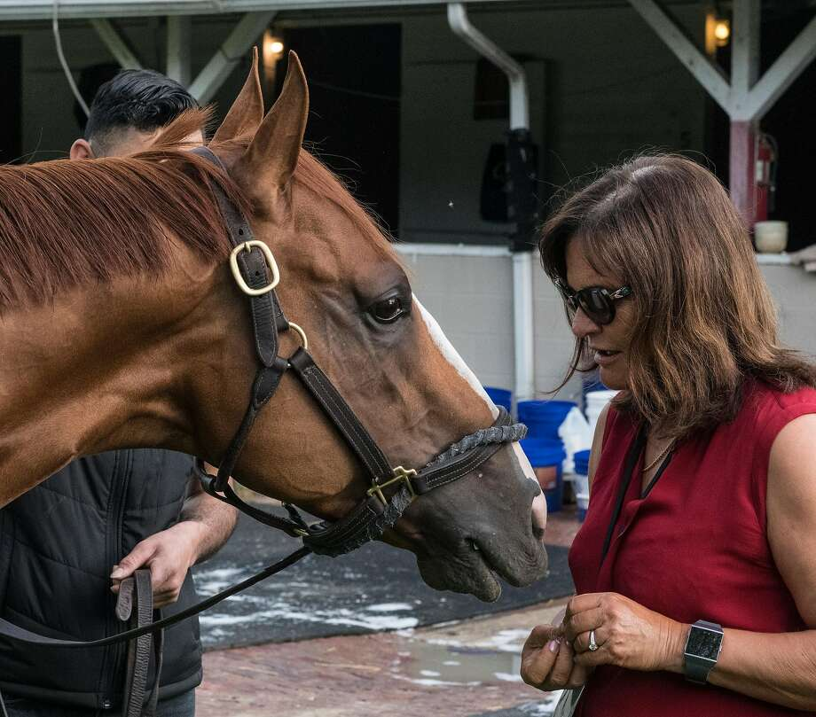 Good Magic is fed some mints by co-owner Barbara Banke after his morning gallop at Churchill Downs on Wednesday. Photo: Skip Dickstein / Albany Times Union