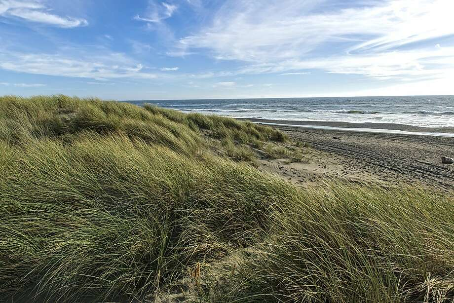 Tolowa Dunes State Park. Photo: California State Parks, 2018