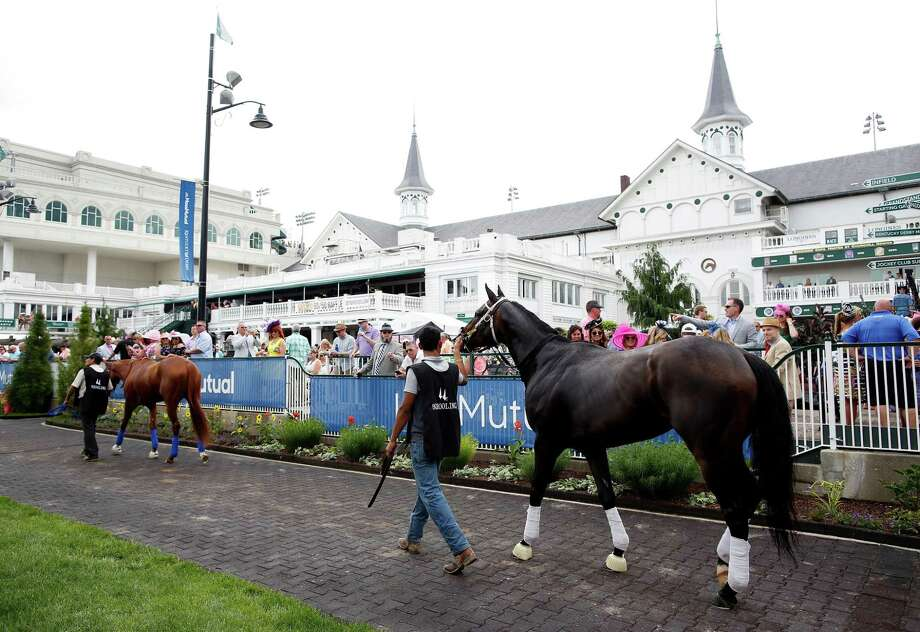 Horses are hot walked in the paddock at Churchill Downs. Photo: Jamie Squire / Getty Images / 2018 Getty Images