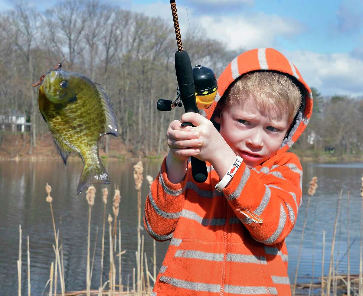 The state Department of Environmental Conservation sponsors Learn to Fish Day on Saturday at Clifton Park's Barney Road Pond. Details.