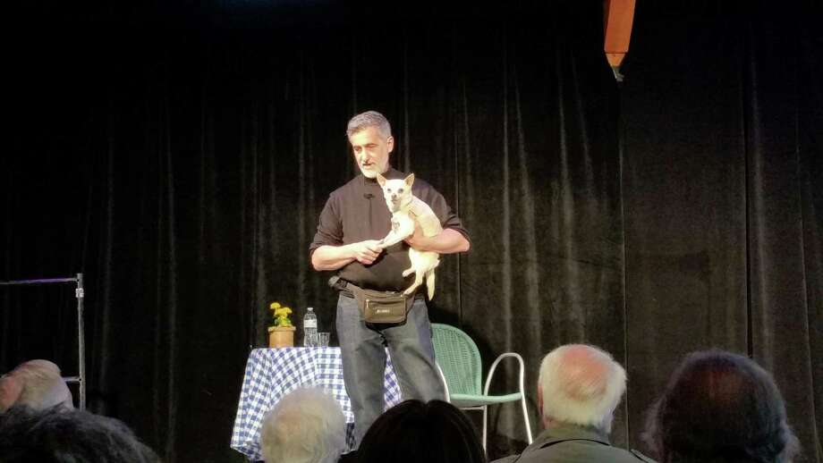 "Renowned theatrical animal trainer Bill Berloni, 61, introduced Chico, his rescued Chihuahua who played ""Bruiser"" in the 2008 musical version of the movie ""Legally Blonde,"" to an audience of more than 110 at the show ""Broadway Tails."" The Sharon Playhouse's Bok Gallery Saturday. Photo: NF Ambery"